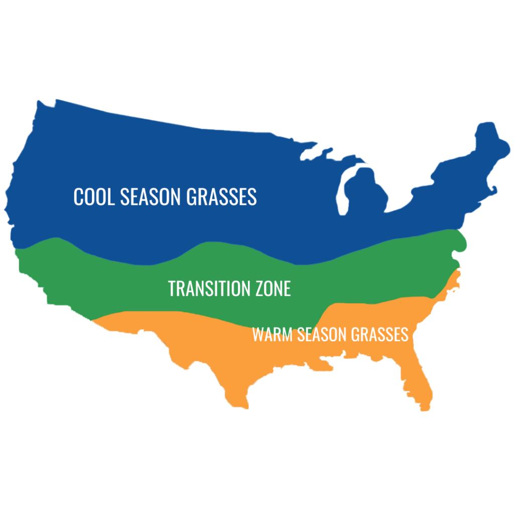 cool season grasses vs warm season grasses