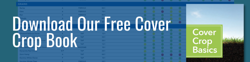 cover crop faqs