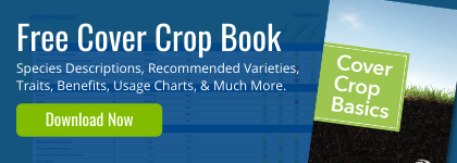 Email Signature Banner Cover Crop Basics