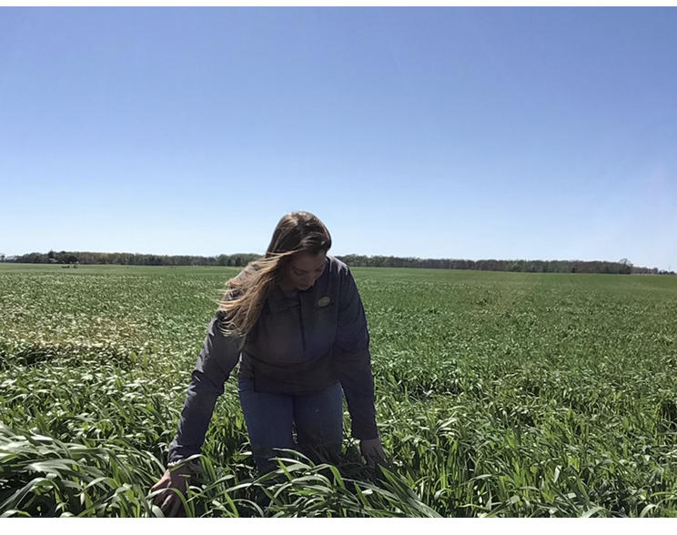 cover crop advice for students from Sarah Houin