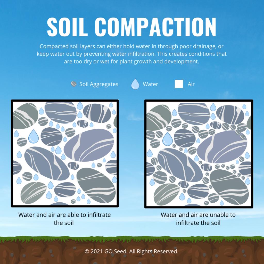 soil compaction long-term gains